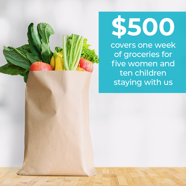 grocery bag filled with produce and text $500 covers one week of groceries for five women and ten children staying with us